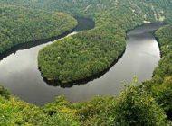 طبیعت و جنگل های دنیا رو به نابودی سریع