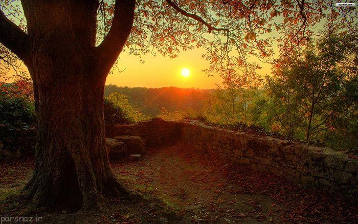 انتهای تابستان و شروع پاییز به روایت عکس