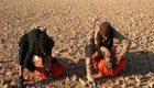 چرا قربانیان داعش قبل از مرگ آرام هستند؟