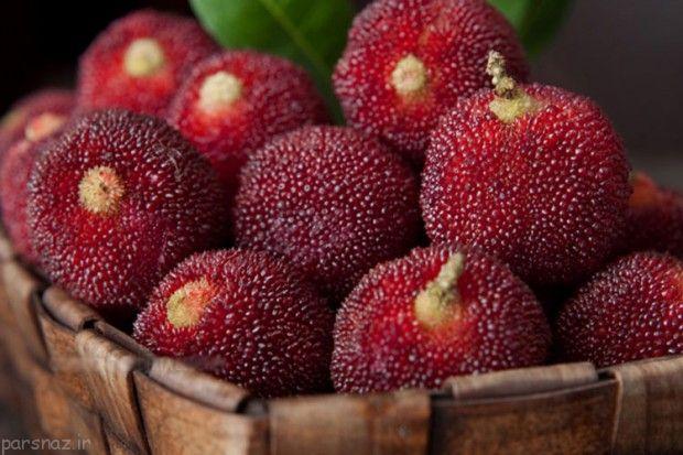 میوه های عجیب و غریب که تاکنون ندیده اید