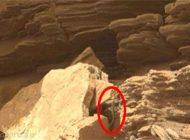موجود عجیب و زنده در مریخ رویت شد