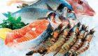 درباره خرید ماهی های منجمد بازار