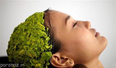 ماسک موهای مفید و طبیعی برای شما