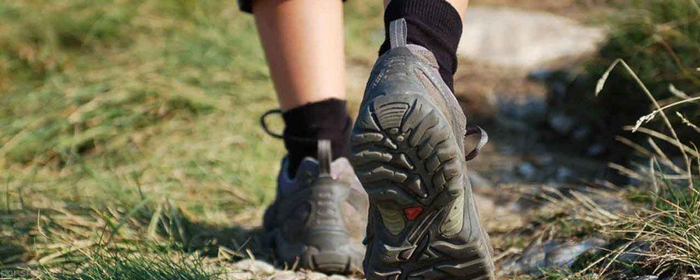 ورزش کردن تاثیر مستقیم در سلامت روده دارد