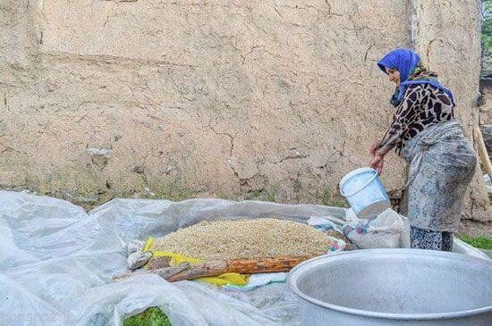 همه جای سرزمین ایران به روایت تصویر