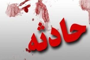 داماد عروس و خانواده اش را با گلوله کشت