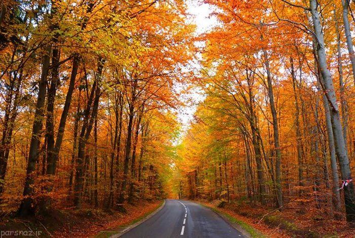 وداع با تابستان ع های طبیعت پاییزی