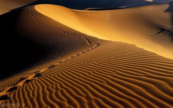 صحراهای باشکوه دنیا به روایت عکس