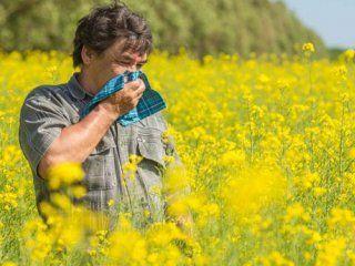 درباره آلرژی در فصل پاییز و راه درمان