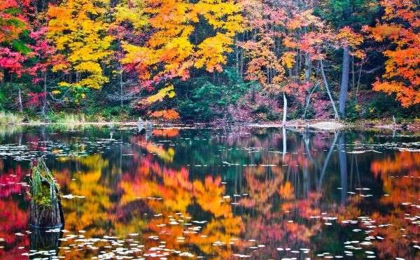 مقاصد گردشگری مناسب برای فصل پاییز