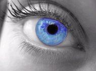 با این عکس های بینایی خود را تست کنید
