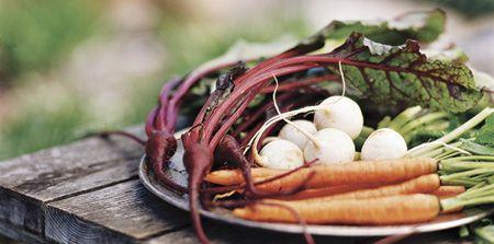 در فصل پاییز سبزیجات پرورش دهید مطالب سبک زندگی   Image of 1365368706 parsnaz ir