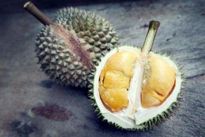 غذاهای عجیب و غریب سراسر جهان