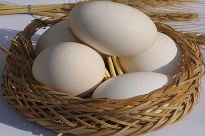 تخم مرغ را نشویید تا سالم بماند