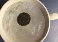 تشخیص فساد مواد غذایی فریزر با سکه