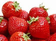 از خوردن توت فرنگی پرخاصیت غافل نشوید