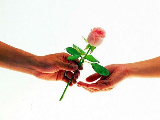 عکس گل رز عاشقانه زيبا و دلنواز
