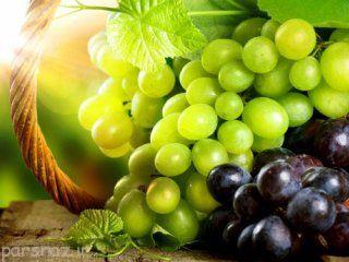 خواص مفید میوه انگور را بشناسید