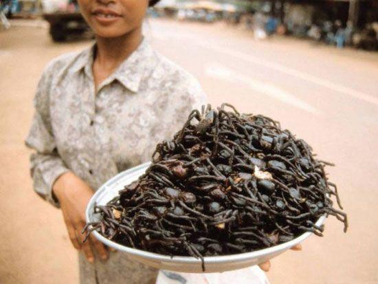 چندش آورترین غذاهای عجیب در کشورهای مختلف