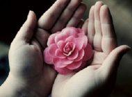 جملات زیبا و دلنشین زندگی ،متن های زیبای زندگی
