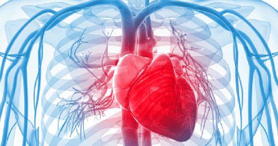 با این کارها سلامت قلب را تضمین کنید
