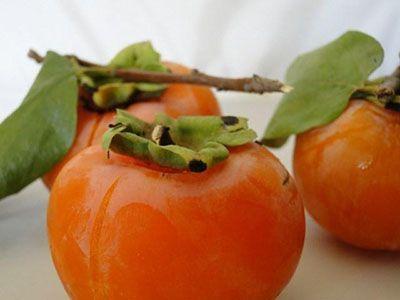 میوه خرمالو درمانگر بیماری ها