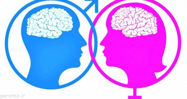 مقایسه اندازه مغز مردان و زنان