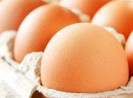 تخم مرغ ریسک ابتلا به سرطان را کم می کند