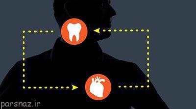 درباره رابطه عمیق قلب و دندان ها
