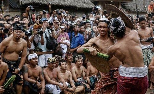 فستیوال جنگ با کاکتوس ها و بدن برهنه