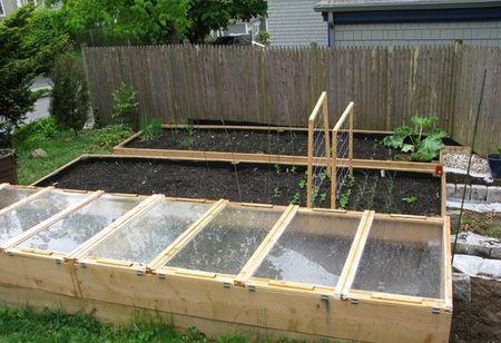 در فصل پاییز سبزیجات پرورش دهید مطالب سبک زندگی   Image of 910424728 parsnaz ir
