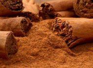 خاصیت های مفید دارچین در طب سنتی