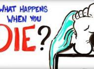 تغییرات بدن بعد از مرگ چه خواهد بود؟