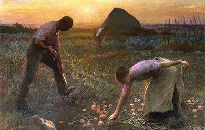 داستان کوتاه و آموزنده مزرعه