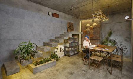 نکته های مهم درباره نگهداری از گیاهان آپارتمانی