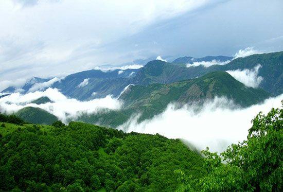 سفری به جنگل ابر شاهرود بر فراز ابرها