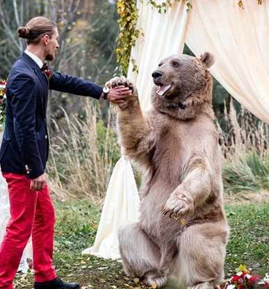 ترسناک و جالب ترین مراسم عروسی جهان