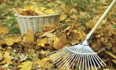 آماده سازی حیاط منزل برای پاییز و زمستان