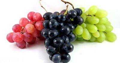 میوه هایی که هسته آن ها پرخاصیت است