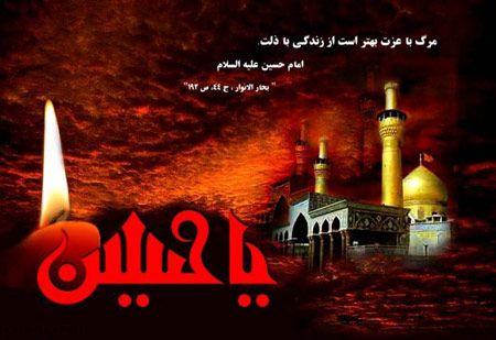 عکس های اربعین حسینی (3)