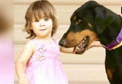 سگ دوبرمن جان کودک را نجات داد
