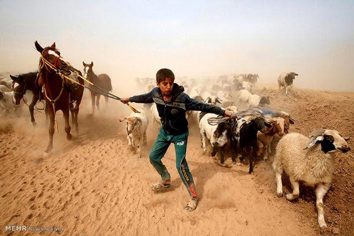 عکس و تصاویر خبری روز دنیا در اینجا (105)