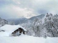 عکسهایی از طبیعت برفی در نواحی شمالی کشور