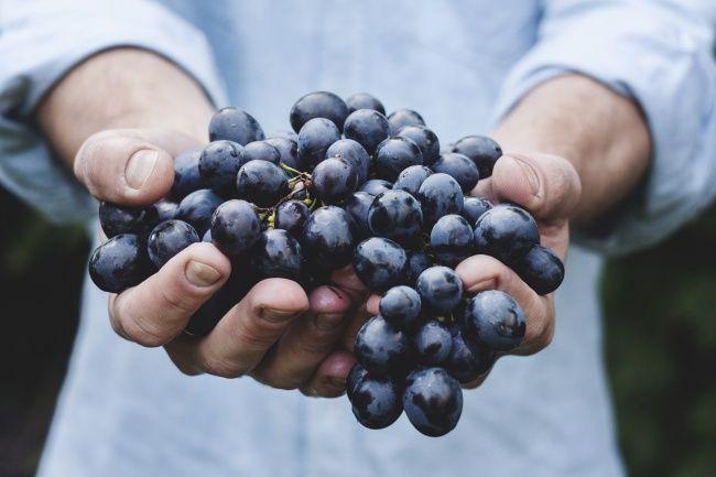 این میوه ها برای پوست معجزه می کنند