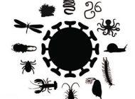 شناخت ویروس ها در دنیای کنونی
