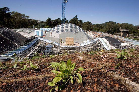 نگاهی به فرهنگستان علوم کالیفرنیا