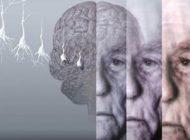 ورزش راه دفاعی در برابر بیماری آلزایمر