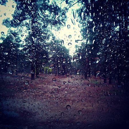 متن های احساسی زیبا برای روزهای بارانی