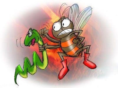 حکایت آموزنده نیش مار و زنبور خواندنی