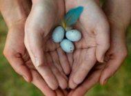 باروری سالم و ارتباط با دهانه رحم زنان